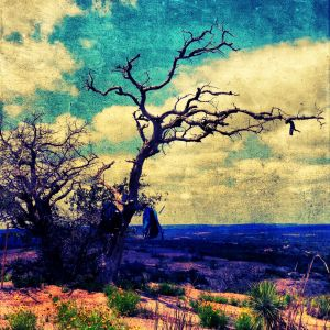 enchanted_rock-c52.jpg